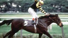Seattle Slew and jockey Jean Cruguet win the 1977 Belmont Stakes and the Triple Crown.