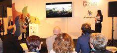 MADRID. Tras la inauguración oficial de FITUR 2017, los expositores y visitantes profesionales han comenzado una frenética jornada de trabajo, repleta de