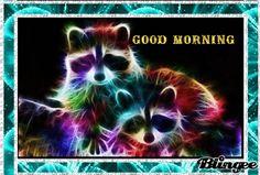 Good Morning my Friends!
