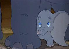 Dumbo Walt Disney, Cute Disney, Disney Dream, Disney Pixar, Dumbo Disney, Baby Elephant Nursery, Elephant Love, Gifs, Baby Dumbo