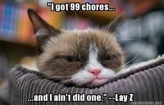 99 chores and I ain't did one.
