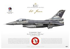 Royal Netherlands Air Force F-16AM MLU Viper