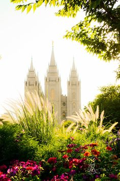 For off use the code YSGVCS Until July 2014 The SLC, Utah LDS, (Mormon) Temple with flowers glowing in a late afternoon son. Utah Temples, Lds Temples, Later Day Saints, Beautiful Places, Beautiful Pictures, Salt Lake Temple, Lds Art, Mormon Temples, Templer