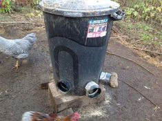 If you get a spare hour of time, you can create your own DIY PVC chicken feeders and waterers. The full thing can be created from PVC, so it's not in any way costly. Chicken Shed, Chicken Life, Canned Chicken, Chicken Coops, Food For Chickens, Pet Chickens, Chickens Backyard, Pvc Chicken Waterer, Chicken Feeders