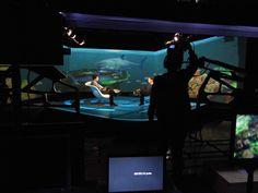 Detrás De .. @ObservadoresTVA con @ivan carrillo  y su invitado @Gerardo del Villar  http://www.azteca.com/capitulos/observadores/190847/los-observadores-gerardo-del-villar-el-documentalista-de-tiburones