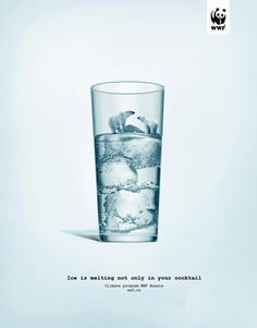 Ice is melting not only in your cocktail. WWF  #social #campaign