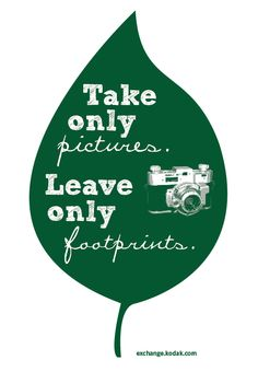 "Free downloadble Earth Day printable PDF. ""Take only pictures. Leave only footprints."" #earthday"