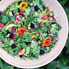 summer salads!  Green & red leaf lettuce, kale, swiss chard, beet greens, cilantro, tomatoes, chioggia beets, green & yellow zucchini, cucumber, scallions, blackberries, a bunch of edible flowers (nasturtiums, zucchini blossoms, calendula petals, & violas).  Dressing was a blended mix of 1/2 red pepper, 1/2 medium zucchini, juice of 1/2 lime, 1 tbsp hemp seeds, & 2 tbsp tahini. #gardentotable