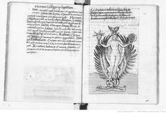 1.° Turba Philosophorum, sive tractatus de auri conficiendi ratione : accedunt figurae. — 2.° Donum Dei, sive liber de eodem argumento : accedunt figurae. | Gallica