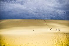 Sandboarding down sand dunes