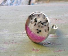 Dragonfruit Ring by realfruitjewelry on Etsy, $30.00    This unique ring is handcrafted from a real slice of the exotic Asian fruit- pitaya, also known as dragonfruit. According to legend, the fruit was created thousands of years ago by fire breathing dragons.    Dragonfruit has a bright pink skin, white flesh, and black seeds. The fruit was dehyrated before being sealed in underneath a clear, glossy resin.