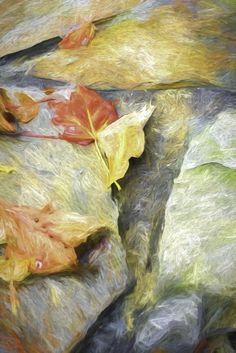 Fall Stream by Photominimalist.deviantart.com on @deviantART