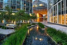 A view of the courtyard and water feature looking towards the entrance to the office building lobby.  The lobby connects the courtyard to the north edge of the site through an additional entrance that opens onto Pennsylvania Avenue.
