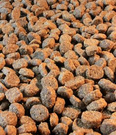 Dog Food 12/30 (my first attempt at stacking photo's in photoshop)