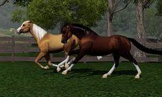 Sims 3 Foals may foal crop 2013 | First bred Quarab at Lakeside Ranch