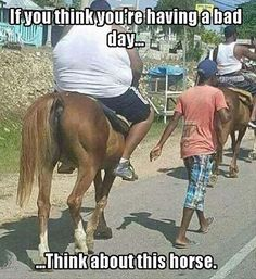 Funny Pictures, Memes, Humor & Your Daily Dose of Laughter Bad Day Meme, Image Designer, Funny Jokes, Hilarious, Funniest Memes, Horse Quotes, Humor Grafico, Having A Bad Day, Adult Humor