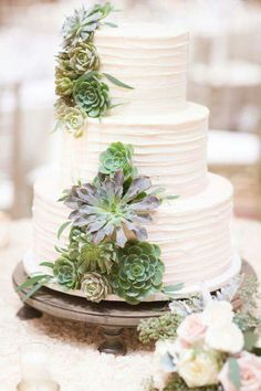 Chanel's wedding cake with scculents