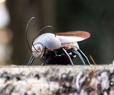 Take the art of grossing out friends and family into the 21st century with the iPhone controlled insect. This high-tech bug resembles a giant cockroach - with...