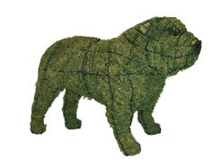 """Bulldog 16"""" Mossed www.braungroup.com #topiary #containergardening #flowers #sculptures #dogs #dog #gardening"""