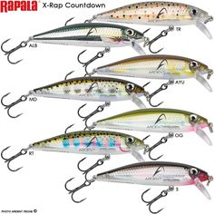 Sports Mem, Cards & Fan Shop Bass Fishing Available In Various Designs And Specifications For Your Selection Auction 0039 Rapala Husky Jerk Hj08