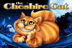 The cheshire cat Free Slot Games, Free Slots, Bingo Canada, Money Bingo, Bingo Sites, Special Games, The Cheshire, Play N Go, Game Start