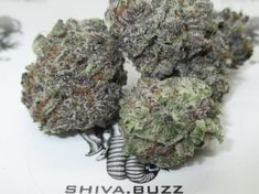 Hybrid strains have a mixed heritage of sativa and indica genetics and show traits from both. A hybrid strain can either be sativa-dominant, indica-dominant, or have an even mix. Purple Candy, Buy Weed Online, Genetics, Cannabis, Herbs, Herb, Ganja, Spice