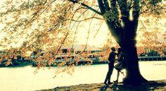 Findet Zeit Euch zu lieben, findet Zeit miteinander zu sprechen, findet Zeit, alles was Ihr zu sagen habt miteinander zu teilen, - denn das Leben wird nicht gemessen an der Anzahl der Atemzüge, sondern an der Anzahl der Augenblicke, die uns den Atem berauben. - George Carlin