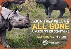 Every day, rhinos and elephants are poached for their horns and tusks, but did you know that if poaching rates continue, they'll disappear in our lifetime? The facts might surprise you. Learn more and share to help spread the word!