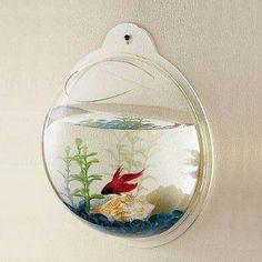 fishtank on the wall
