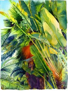 Cayman Palm by Marlies Merk Najaka.e print of an original watercolor painting. Printed on deckle-edged Arches watercolor paper. Signed and numbered below the image. Limited edition of Paper size is 36 H x 28 W. Dimensions refer to image size. Tree Watercolor Painting, Arches Watercolor Paper, Watercolor Leaves, Watercolor Landscape, Watercolour, Flora Und Fauna, Caribbean Art, Tropical Art, Tropical Paintings