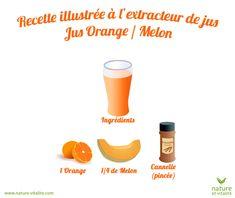Recette à l'extracteur de jus pour un délicieux jus melon / orange. Les fruits doivent être pelés et coupés en cubes : ne pas passer de pépins ou de peaux dures dans votre appareil.