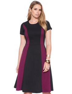Plus Size Colorblock Fit and Flare Dress From The Plus Size Fashion At www.VinageAndCurvy.com