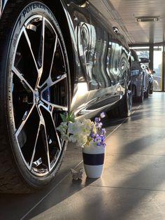 Gady Liebenau. Der Frühling ist da! BMW M <3 Bmw, Autos, Graz, Automobile