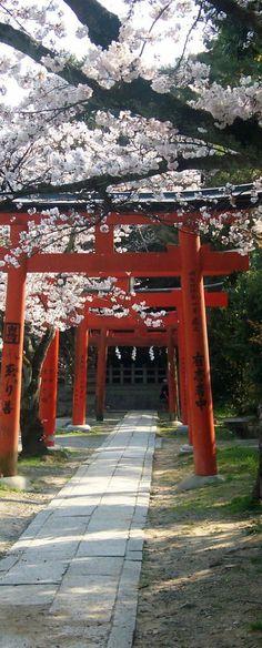 Prima o poi arriverò anche qui ... I <3 JAPAN