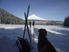 Cross Country Skiing, Mountains, Winter, Nature, Travel, Winter Time, Naturaleza, Viajes, Destinations
