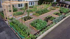 plan raised beds wooden pergola