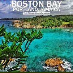 Boston Bay!