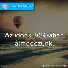 gondoltad volna idézetek - Google keresés Funny Quotes, Life Quotes, Motivating Quotes, Curiosity, Everything, Facts, Motivation, Funny Phrases, Quotes About Life