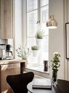 design attractor: White Walls and Dark Wood
