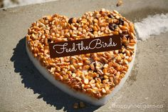Feeding The Birds - Homemade Bird Feeders Kid's Craft - Corn And Chestnuts