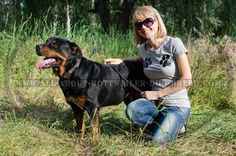 #Rottweiler #Leather #Collar with Conchos $34.90 | www.all-about-rottweiler-dog-breed.com