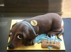 I could do the dog cake for us to eat and the bone cake for the birthday pup to eat! Dog Cakes, Cupcake Cakes, Dachshund Cake, Daschund, Animal Cakes, Cake Decorating Supplies, Cake Pictures, Cute Cakes, Creative Cakes