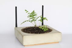 Router by The Consortium For Slow Internet // Check out: 5 Perfect Holiday Gifts For Tech Lovers
