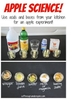 Apple Science! An apple experiment using acids and bases from your kitchen.