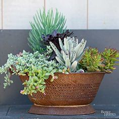 Make cute, unique and rustic-inspired plant containers by using flea market finds. Salvage and upcycle thrifted items such as old ladders, chicken feeders and colanders into plant containers fit for outdoor gardening.