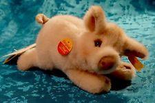 """Un Original Steiff """"Sissi"""" lechón con las etiquetas y botón en oreja Hermosa 072604"""
