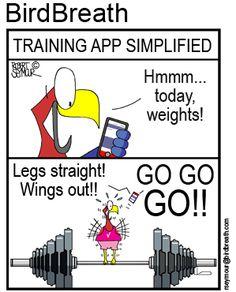 BirdBreath t-shirts and merchandizse Funny Birds, Point Of View, Parrot, Cartoons, Nutrition, Training, App, T Shirt, Life