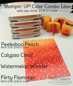 Stampin' UP! Color Combo ideas, including new 2016-2018 In Colors by Patty Bennett