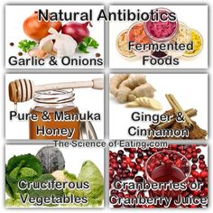 14 Natural Antibiotics To Fight Infection, And What Drug Companies Don't Want You To Know