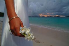 Caribbean wedding tr